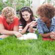Stock Photo: Group of happy college students in grass