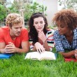 Group of happy college students in grass — Stock Photo #13486134