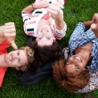 Group of happy college students in grass — Stock Photo #13486139