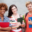 Happy group of college students - Stock Photo