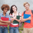Happy group of college students — Stock Photo #13486149
