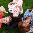 Group of happy college students in grass - Stock Photo