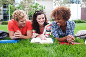 Group of happy college students in grass — Stockfoto