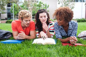 Group of happy college students in grass — Stok fotoğraf