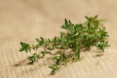 Thyme on sack — Stock Photo