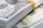 Pack (bundle) of new dollars — Stock Photo