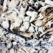 Charcoal and white ash of extinguished bonfire - Stock Photo
