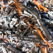 Scattered broken smoldering bonfire horizontal view — Stock Photo #12679529