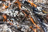 Scattered broken smoldering bonfire horizontal view — Stock Photo