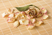 Dry rose petals on a reed mat — Stock Photo