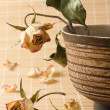 Dry rose with leaves in wooden bowl still-life — Stock Photo