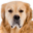 Pixels image of dog — Stock Photo