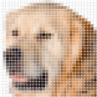 Stock Photo: Pixel image of dog with square rounded pixels