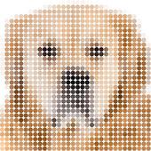 Circle pixels image of a dog — Stock Photo