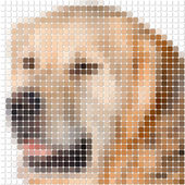 Pixel image of dog with square rounded pixels — Stock Photo