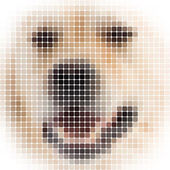 Square rounded pixels image of a dog with white vignette — Stock Photo