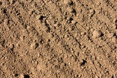 Soil textured surface with grooves — Stock Photo