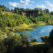 Forest lake in abandoned quarry — Stock Photo #41945385