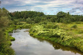 River in countryside in cloudy day — Stock Photo