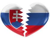 The Slovakia flag — Foto de Stock