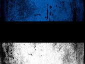 La bandera de Estonia — Foto de Stock