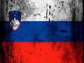 флаг словении — Стоковое фото