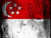 The Singapore flag — Stock Photo