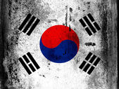 The South Korea flag — Stock Photo