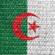 The Algerian flag — Stock Photo #14971781