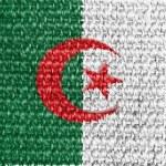The Algerian flag — Stock Photo