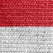 Stock Photo: Indonesiflag