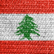 Lebanese flag — Stock Photo #14972157