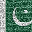 Pakistani flag — Foto Stock #14972219