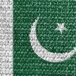 The Pakistani flag — Stock Photo #14972219