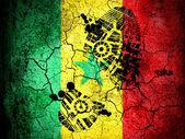 The Senegal flag — Stock Photo
