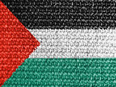 The Palestinian flag — Stock Photo