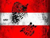Avusturya bayrağı — Stok fotoğraf