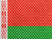 The Belarusian flag — Stockfoto