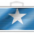 The Somalia flag -  