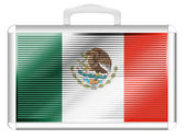 The Mexican flag — Stok fotoğraf