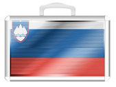 The Slovenia flag — Stockfoto