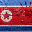 The North Korea flag — Stock Photo