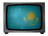 Die kasachische flagge — Stockfoto