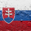 The Slovakia flag - Foto de Stock