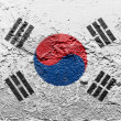 The South Korea flag - Stok fotoğraf