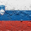 The Slovenia flag - Foto de Stock