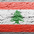 Lebanese flag — Stock Photo #15387293