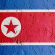 North Koreflag — Stock Photo #15389093
