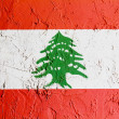 Lebanese flag — Stock Photo #15389137