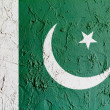 The Pakistani flag — Stock Photo #15389297